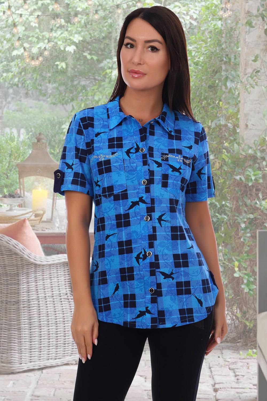 Синяя рубашка с кратким  рукавом