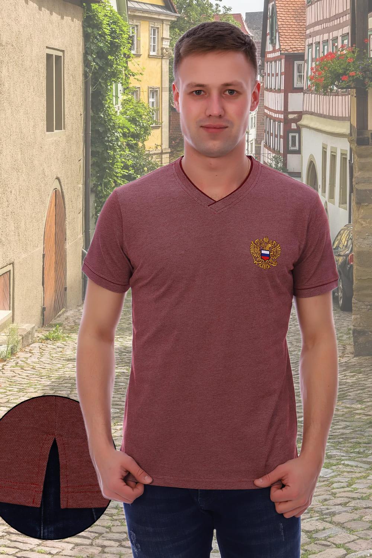 мужская футболка с гербом
