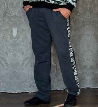 Серые штаны с лампасами 9000